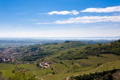 200-Летнее Итальянское Вино